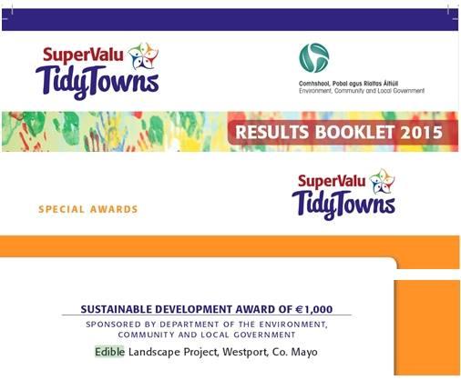 Tidy Towns Award